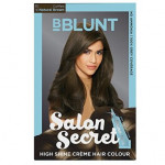 Buy Salon Secret High Shine Creme Hair Colour - Natural Black Online