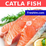 Buy Catla Fish - With half Head Online