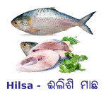 Buy Hilsa Fish - Bengali Cut - ଇଲିଶି ମାଛ Online