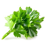 Buy Coriander Leaf - Dhania Patra  - 1 Bunch  Online